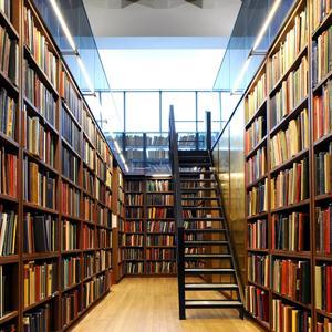 Библиотеки Армизонского